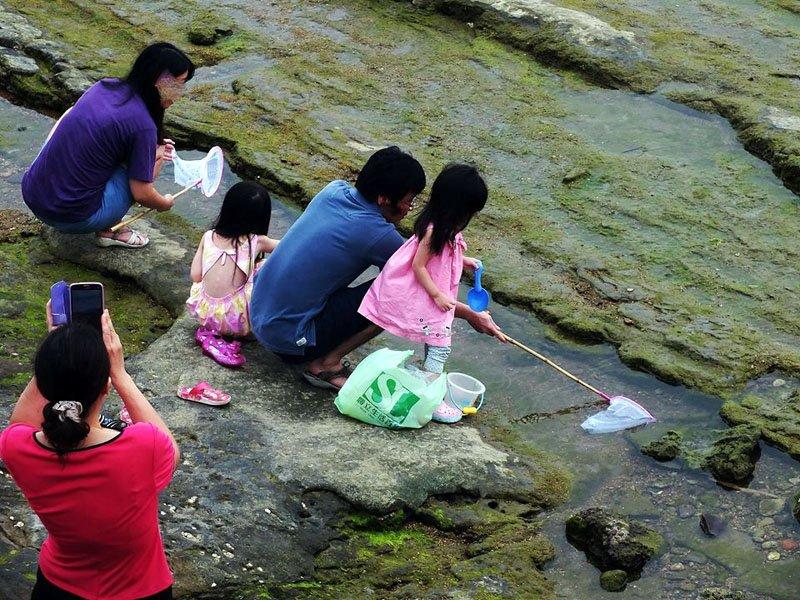 未劃設保育區前,不少遊客攜家帶眷,到潮間帶遊玩,人手一網。(圖/民眾提供)