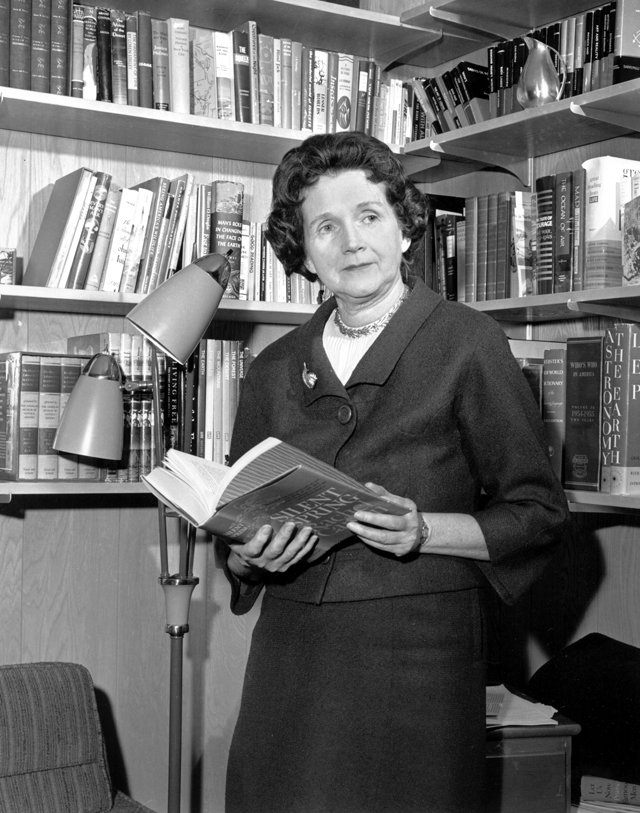 1963年3月,瑞秋.卡森在自己的書房內,手裡拿著代表作《寂靜的春天》(美聯社)