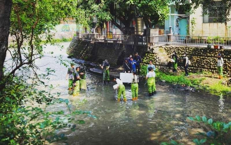 綠川工坊的年輕團隊,以具體行動來引發社會迴響(圖 / 綠川漫漫@facebook