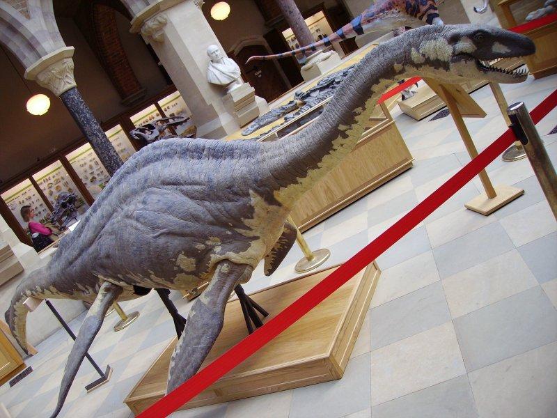 尼斯湖水怪博物館製作的水怪模型。(圖/User:Ballista@wikipediaCCBYSA3.0)