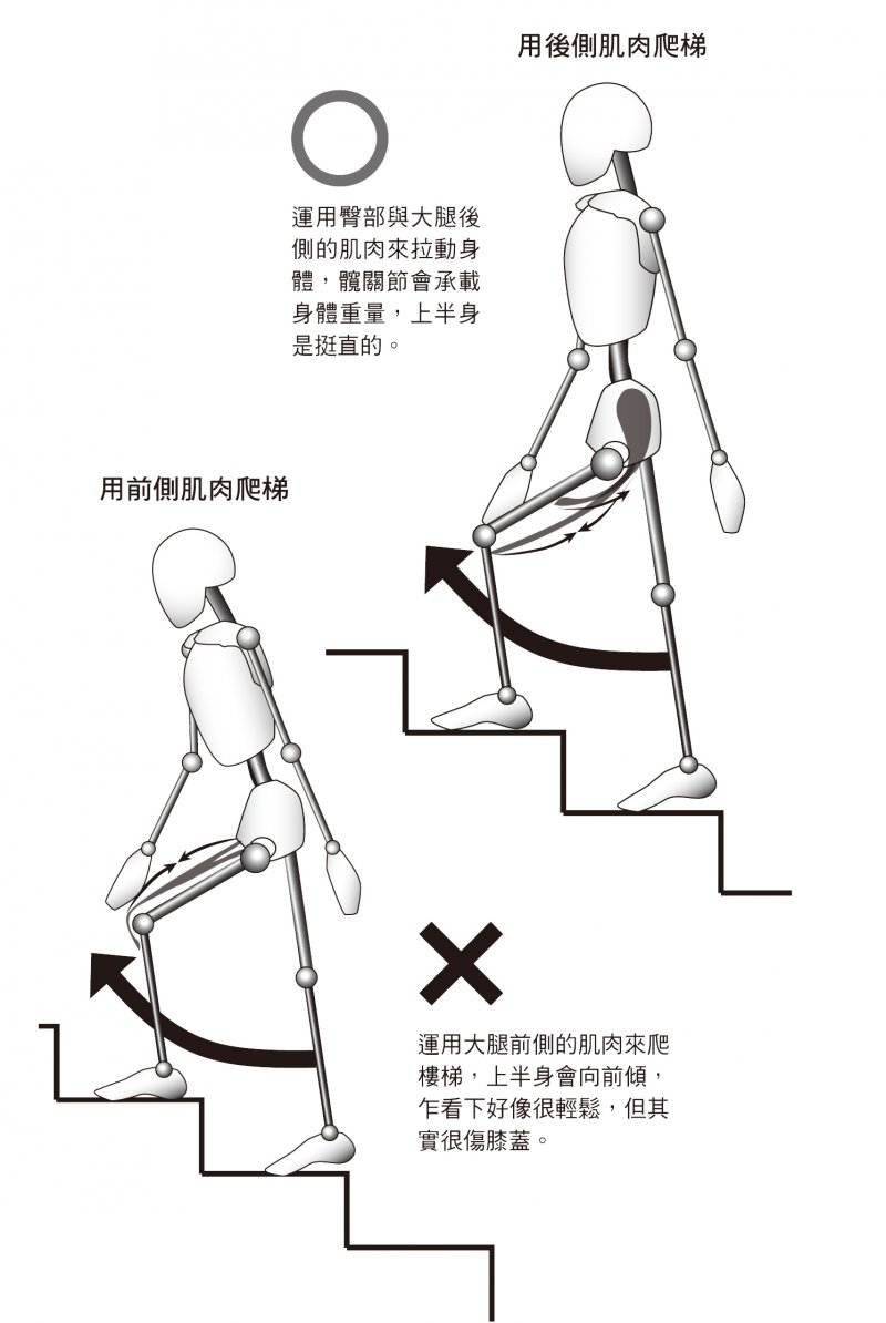 爬樓梯肌肉展現-1.jpg