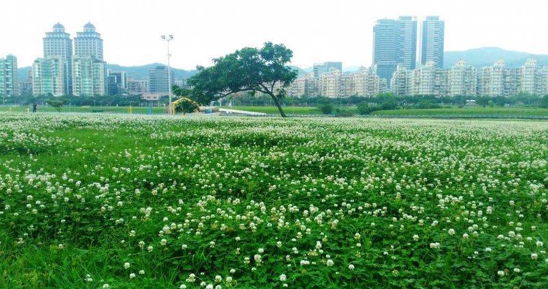 20170505台北市河濱公園也看得到鬼怪場景。(圖/台北市政府)
