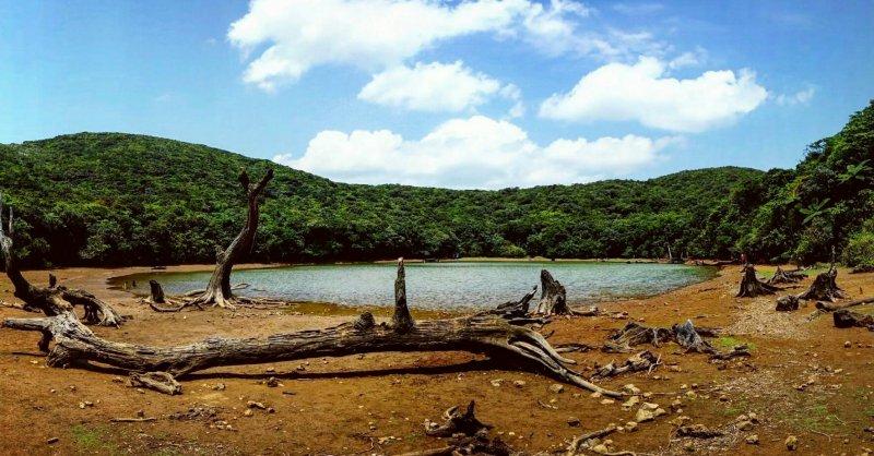 大天池山路雖不好爬,但能一睹如此特殊的景觀仍吸引不少遊客前往。(圖/俞嘉琦 拍攝)