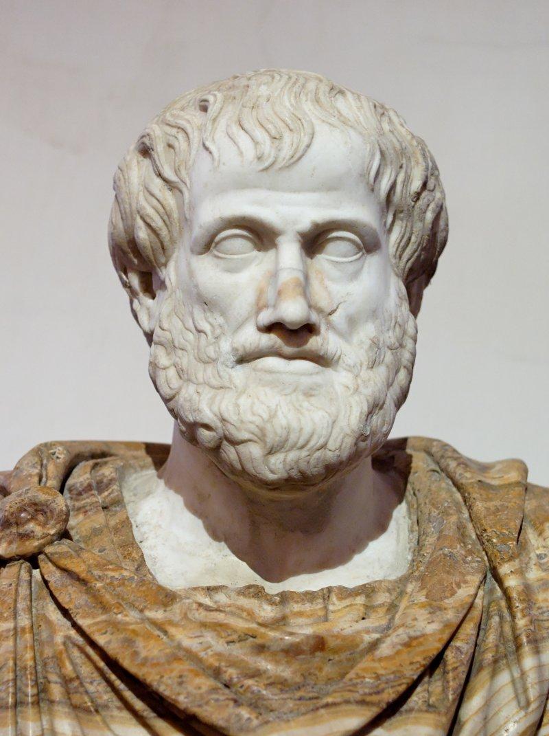 亞里斯多德。(取自維基百科)