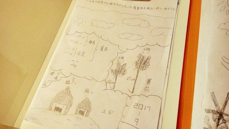 台南展賦自學團的自然課觀察記錄(圖/林曉盈攝影)