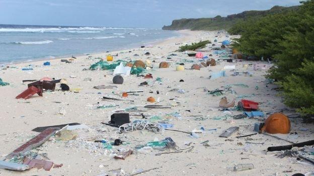 越來越多的人認識到人類對環境造成嚴重污染,希望使用有利環境的可再生材料。(BBC中文網)