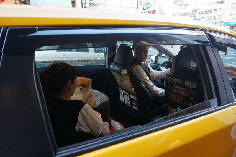 「友善狗狗計程車」採預約服務制,請事先預約並告知服務需求。(取自台北市政府)