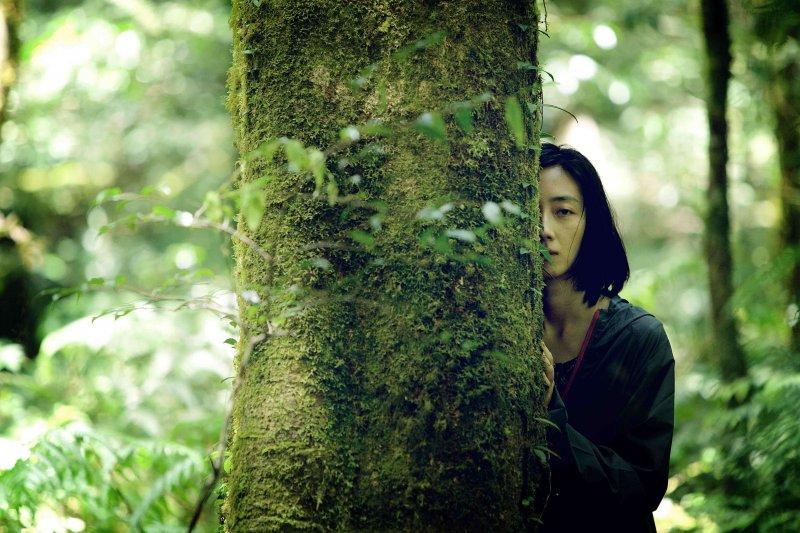 德布西森林Forêt Debussy。(圖/台北電影節提供)