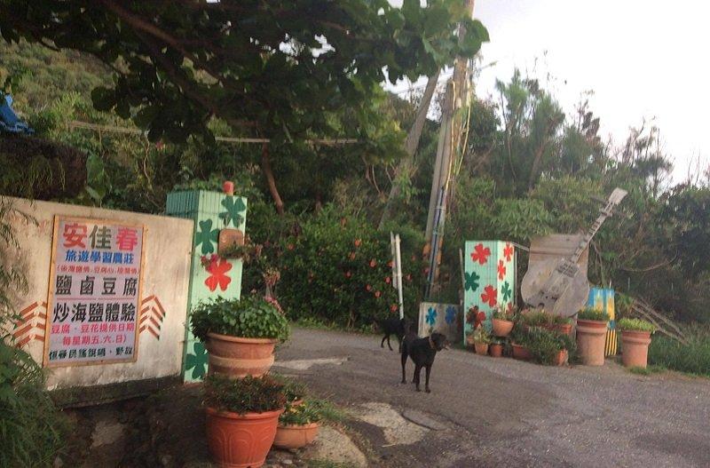 黑貓姐的「安佳春旅遊學習農莊」。(作者提供)