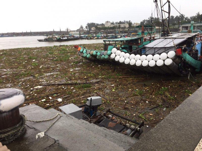 連日豪大雨東石漁人碼頭漂進大量樹枝、垃圾及布袋蓮等雜物。〔圖/嘉義縣政府提供〕