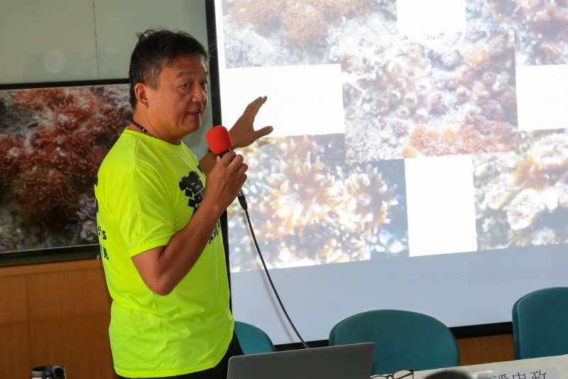 20170623-中研院特有生物研究中心研究員陳昭倫23日出席「瀕危大潭藻礁發現一級保育類柴山多杯孔珊瑚」記者會。(顏麟宇攝)