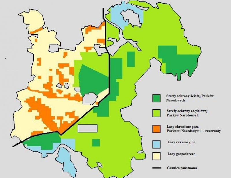 比亞沃維耶扎原始森林的位置(Pełnik@Wikipedia/CC BY-SA 3.0)