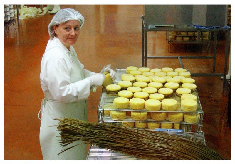 諾曼地乳酪之旅,參觀製造過程之外還能品嘗各式乳酪。(圖/大塊文化提供)