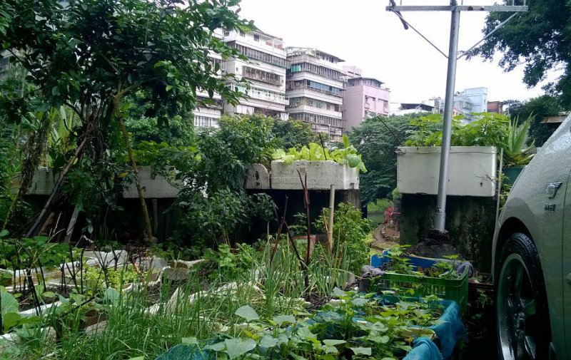 (圖/台北城市散步提供)