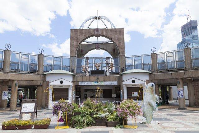 天王寺動物園(圖/shutterstock提供)