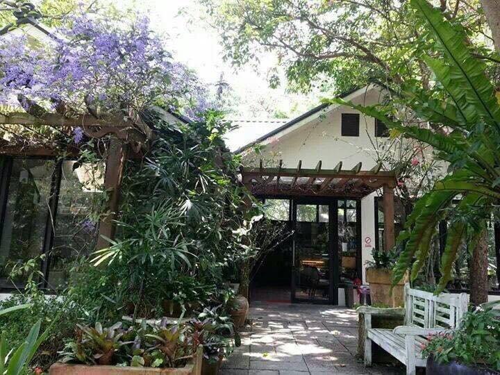 清幽、舒適的何家園庭園餐廳,適合全家一起踏青、享受陽光綠地(圖 / 何家園庭園餐廳粉絲團)