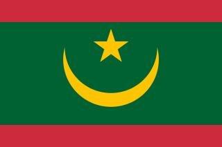 茅利塔尼亞新版國旗(Wikipedia/CC0)
