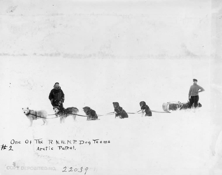 1909年育空地區,雪橇犬拉車。(BiblioArchives/LibraryArchives@Flickr)