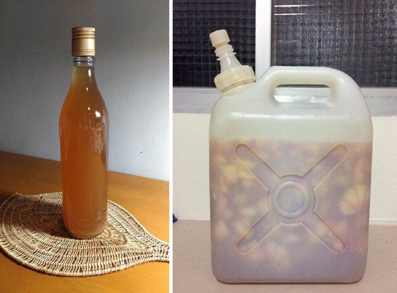 回來當晚,帶回來的水蜜桃就被我釀了下去,如無意外,三個月後將變成美酒。釀酒課老師也說,水蜜桃酒是最香醇的。(寇延丁提供)