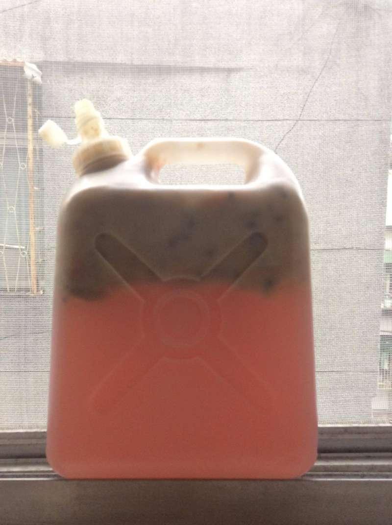 04香蕉酒不僅結果出人意料,釀造過程也匪夷所思,居然呈粉紅色。(寇延丁提供)
