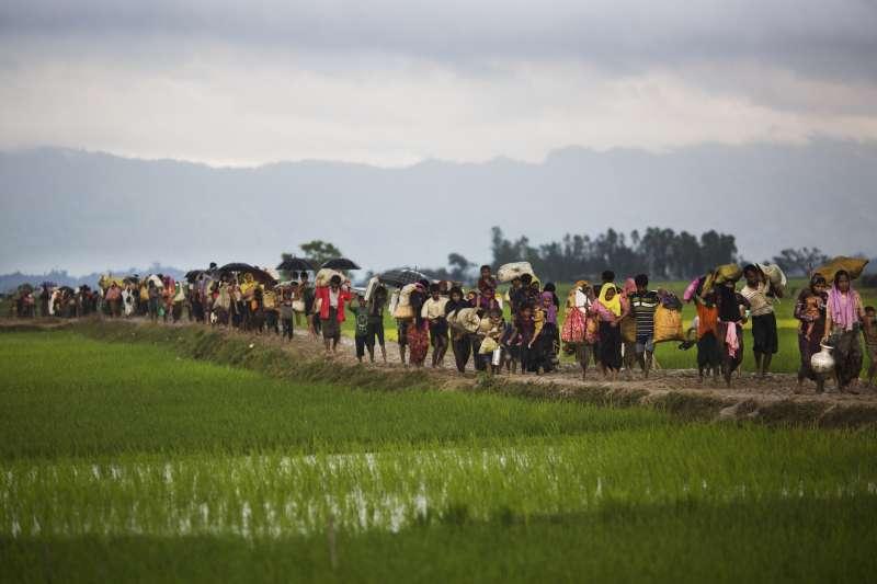 緬甸軍隊加強掃蕩羅興亞地區武裝分子,眾多羅興亞穆斯林被迫逃往邊境地帶。(美聯社)