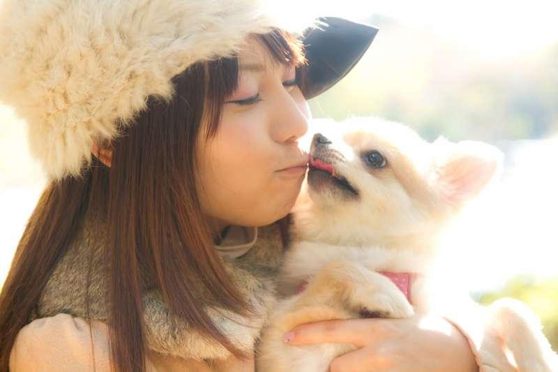 動物的可愛外表非常療癒人心。(圖/Pakutaso)