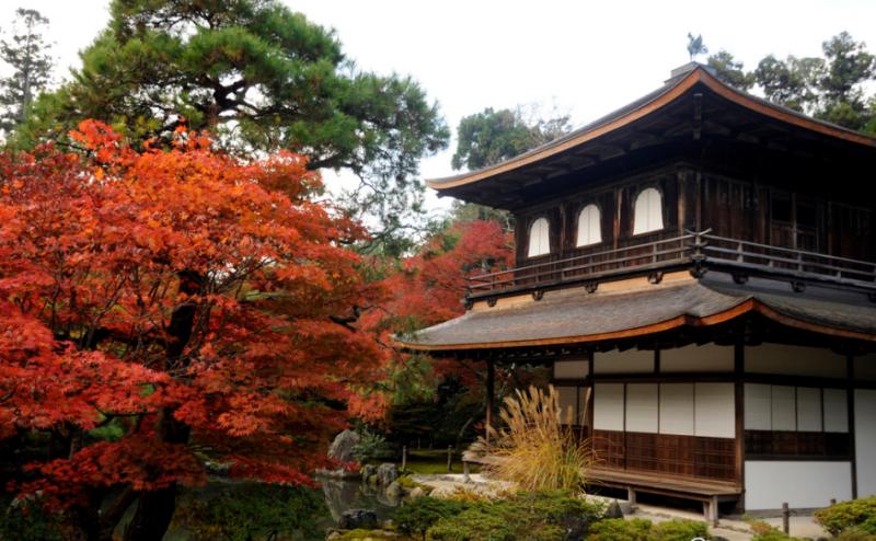 銀閣寺沒有貼滿銀箔,反而使用暗色漆,在楓紅的暮色中,更顯莊重沉穩。(圖/ Ari Helminen@Flickr,FunTime提供)