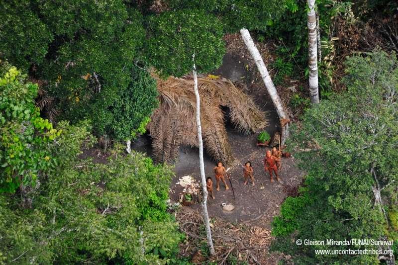 巴西印地安人基金會拍攝到的原始部落居民。(圖/FUNAI)