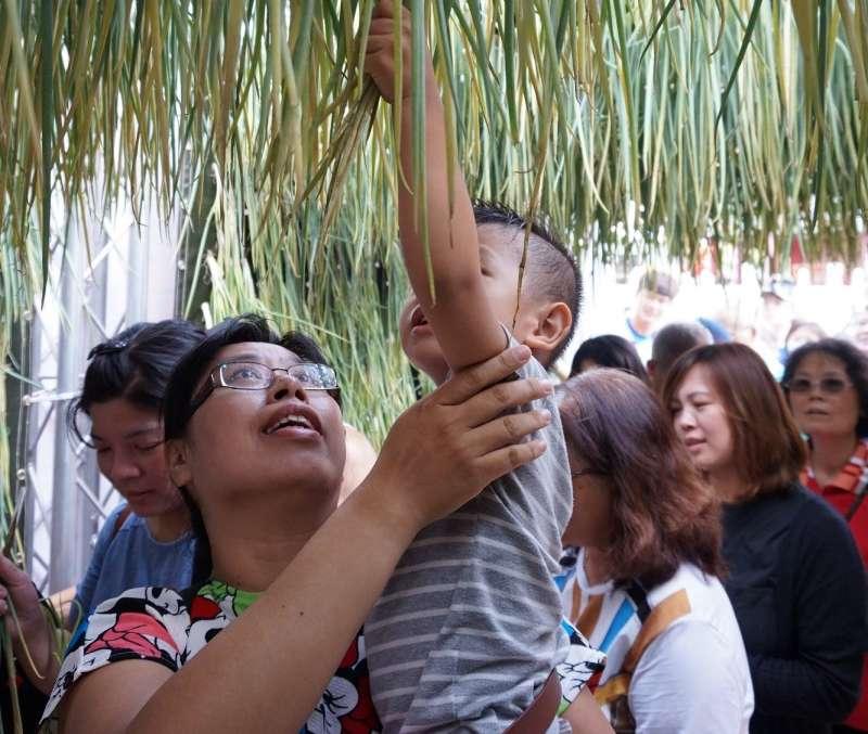 儀式結束後舉辦「拔蔥毛」活動。(圖/高雄市立歷史博物館提供)