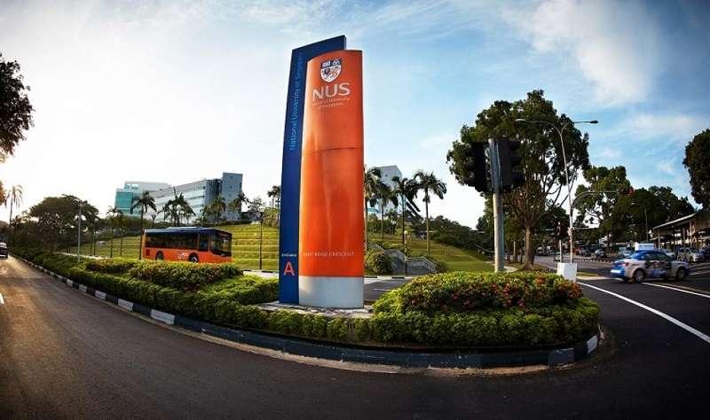 新加坡大學排名 22 。