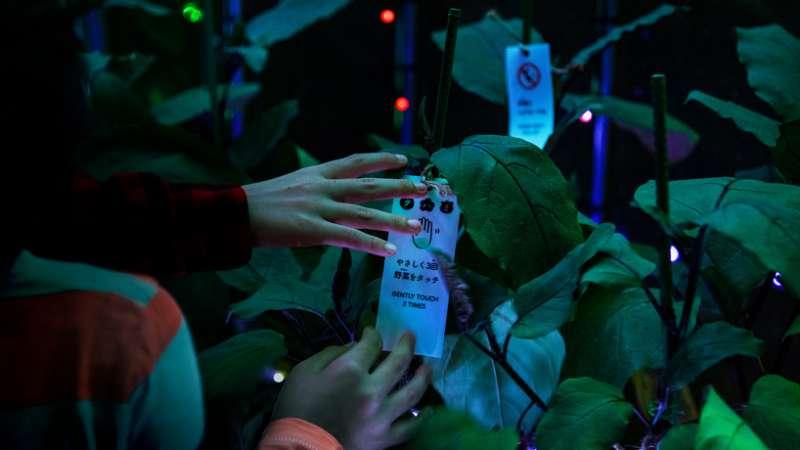 伸手觸摸蔬果,就能演奏不同音樂。(圖/取自Designboom)
