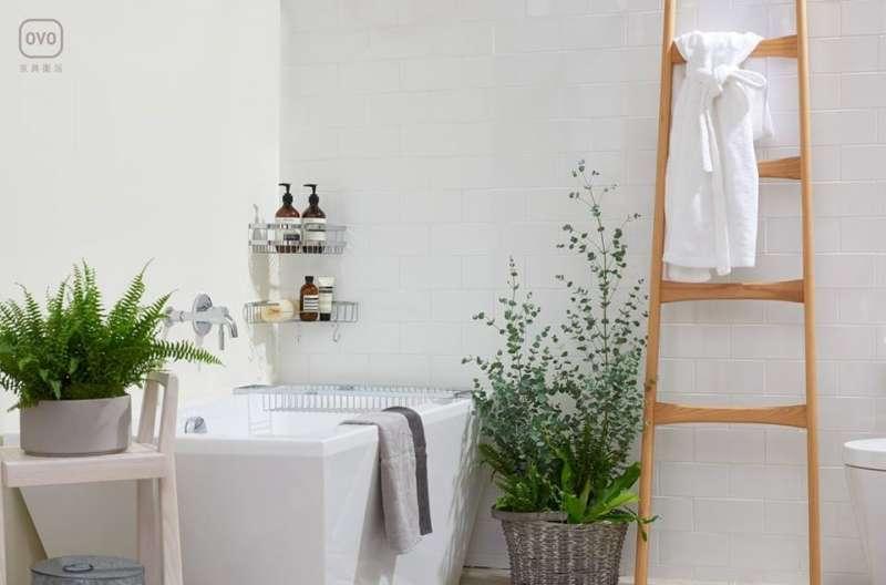 現在也有帶著走、免砌牆的「獨立式浴缸」對於有搬家需求,又想追逐泡澡空間的族群來說是可以考慮的新選擇。(圖/OVO官方粉絲團)