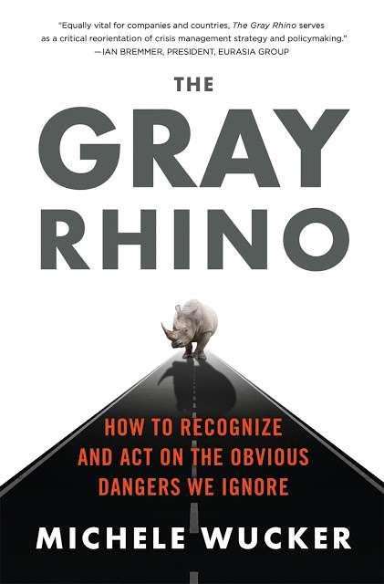 《灰犀牛:危機就在眼前,為何我們選擇視而不見?》英文版書影。(圖/Gene思書齋)