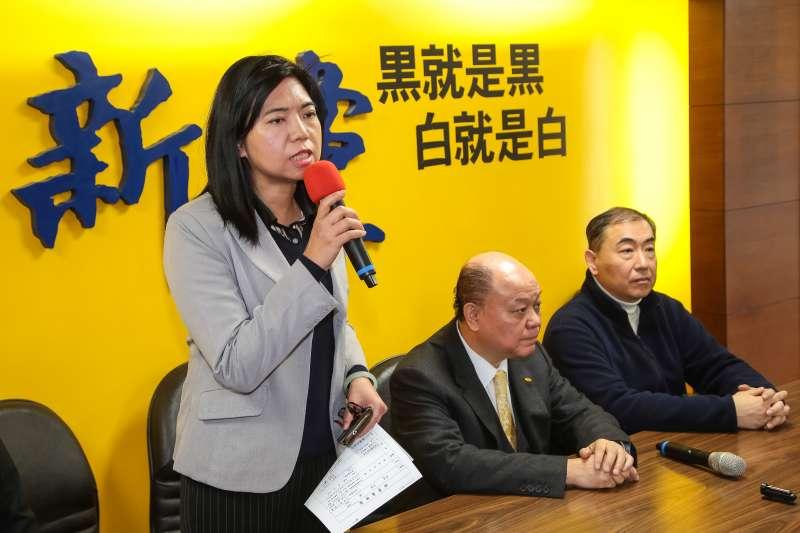 20171219-律師陳麗玲19日針對新黨黨工住家遭調查局搜索一事,召開記者會說明。(顏麟宇攝)