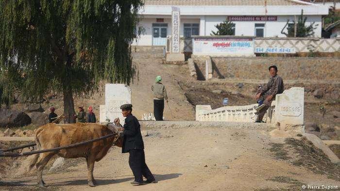 北韓農民的艱苦難為外人所知。(德國之聲)