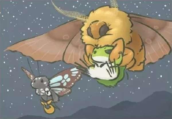 日本大蠶蛾的翅展最大可以達到15厘米!(圖/澎湃新聞)