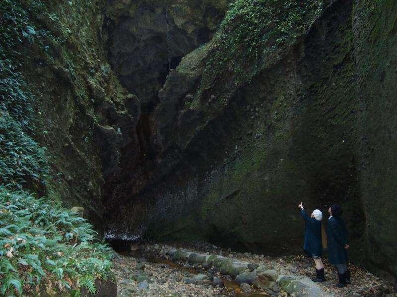 「伊尾木洞」一個因長年累月受到太平洋的海浪侵蝕而形成的天然洞穴。(圖/高知縣安藝市)