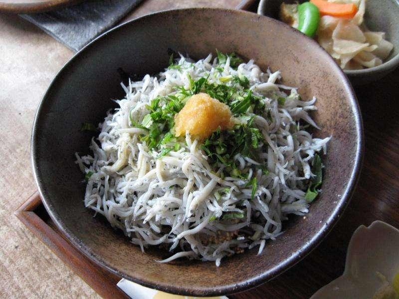 安藝市漁獲豐富,「銀魚蓋飯」絕對不可錯過。(圖/高知縣安藝市)