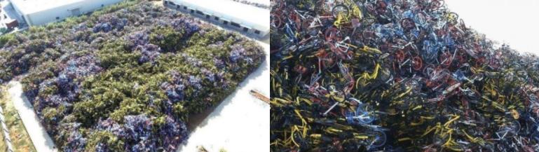 中國福建省廈門市同安區出現一座「共享單車墳場」,像這樣的場景在中國其他城市也看得到。(圖/數位時代提供)