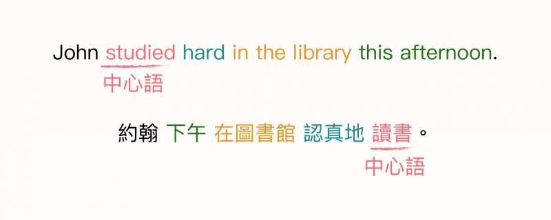 動詞是句子中的核心,也就是「中心語」。從圖中可以看出,中文與英文的中心語位置剛好是相反的。(圖/黃楷元、張語辰,研之有物提供)