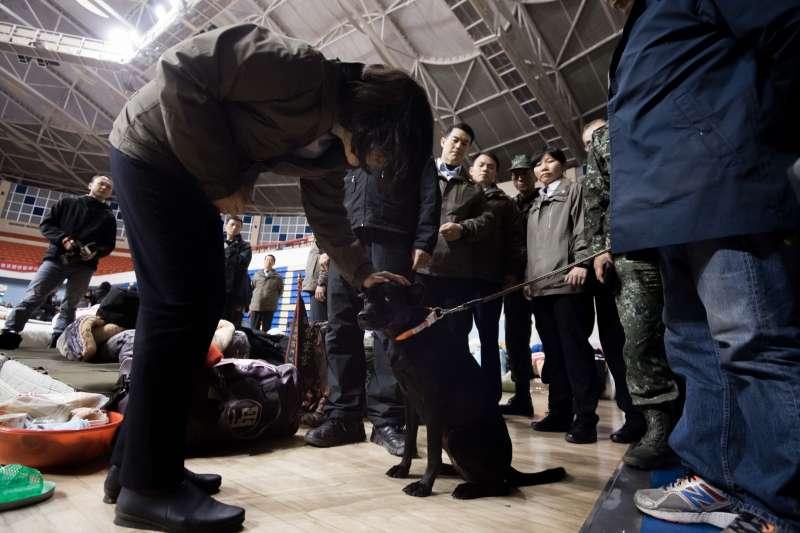 蔡英文訪視收容中心時,見到避難的小黑狗,也特別停留摸摸牠。(總統府提供)
