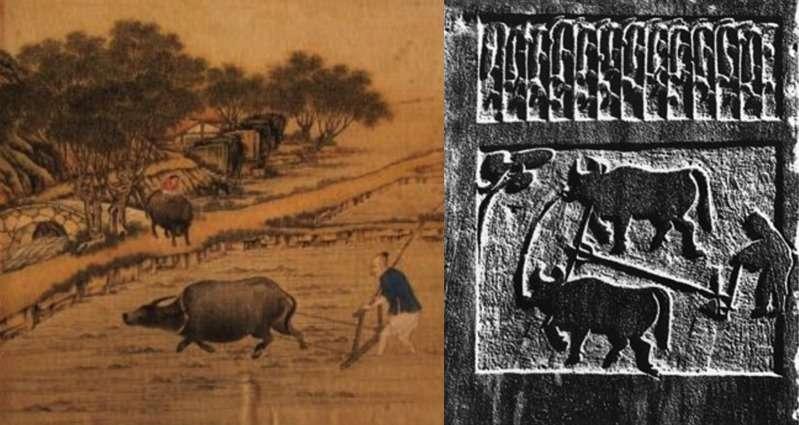 漢代與清代的農耕圖,千百年來,農業生產方式並無太大變化。(圖/澎湃新聞提供)
