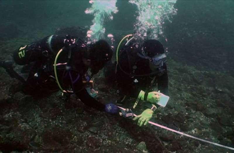 水下考古隊員正在測繪沉船「山藤丸」的殘骸。很多人會將水下考古與水下尋寶、打撈沉船混為一談,其實,水下考古是一種技術,也是一門學問,正式的名稱應該是「水下考古學」。 (圖/臧振華,研之有物提供)