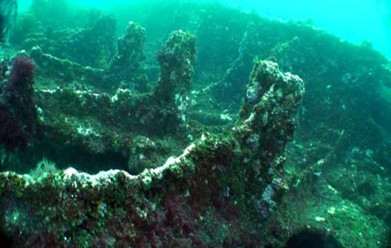 日本運輸船山藤丸的水中殘骸。(圖/臧振華,研之有物提供)