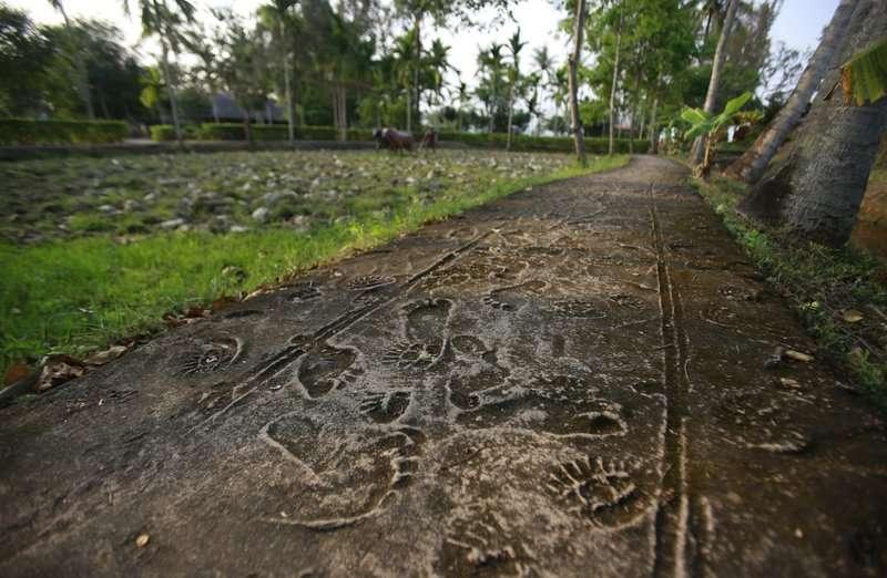 美萊村大屠殺50周年,越南政府保存當年村民的腳印與美軍軍靴,紀念這段慘痛的歷史。(AP)