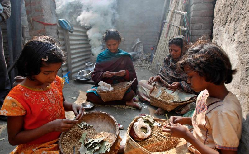 印度Dhuliyan,11歲的Sagira Ansari和家人一起卷香煙。Sagira和她的父母卷1000捆香煙能拿到75盧比(1.5美元)的工錢,一個月總共能掙7500盧比 (150美元)。(圖/言人文化提供)