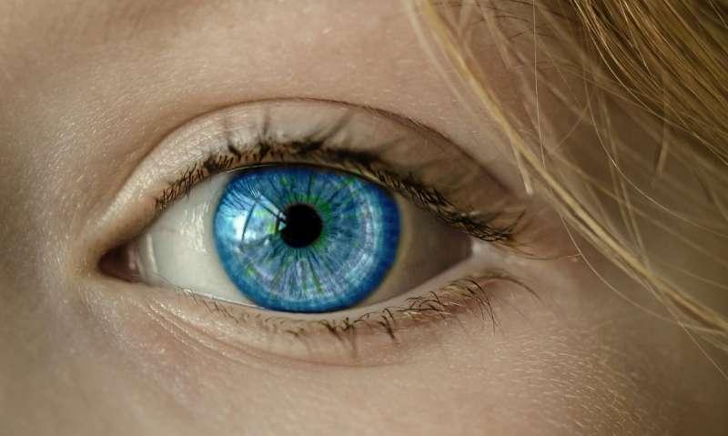 在亞馬遜與史丹佛大學的合作中,透過影像可及早辨識出糖尿病性視網膜病變,及早進行治療(圖 / cocoparisienne@pixabay)