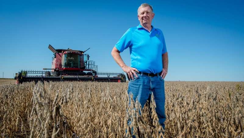大豆成為美中貿易戰的焦點。(愛荷華大豆協會)