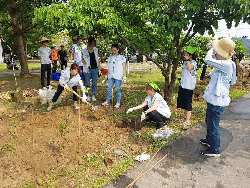 台灣花王30多位員工一早即頂著艷陽,在竹北食物森林種植樹苗。(圖/方詠騰攝)