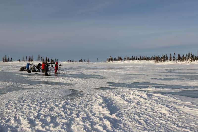 正前方距離母熊產房約130公尺之處,隊友們架好腳架,等待母熊出洞。(圖/時報出版提供)